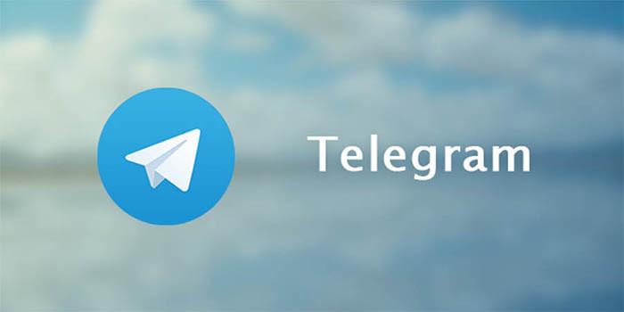 Причиной блокировки Telegram назвали желание Павла Дурова создать свою криптовалюту