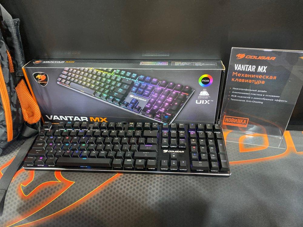 Vantar MX