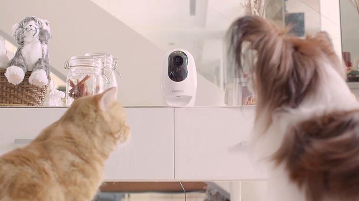 IFA 2016. Acer представила линейку устройств для удаленного развлечения питомцев